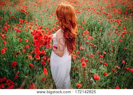 beautiful young woman in poppy field holding a bouquet of poppies, summer