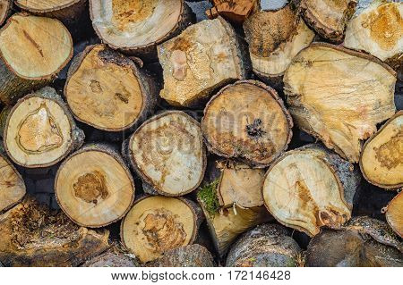 logs stacked in piles. damaged wood texture background