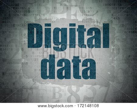 Data concept: Painted blue text Digital Data on Digital Data Paper background with   Hexadecimal Code
