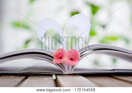 Couple of Crown-of-thorns flower with heart shape which made by white paper notebook. Clear bright nature background