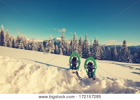 Green Snowshoes Standing In Deep Snow