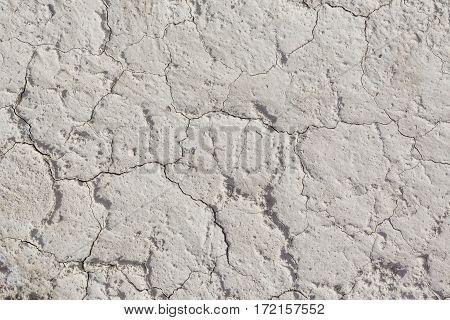 White arid cracked dry textured desert soil
