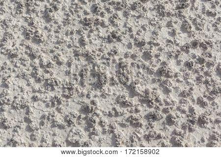 White arid cracked lumpy dry textured desert soil
