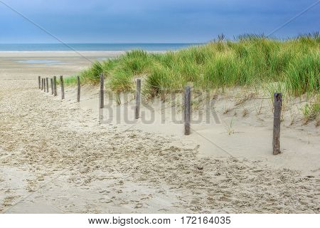 Dunes and ocean in the North of Holland