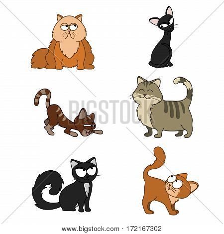 Collection of funny cats black red fat Funny set of icons with cats set Cartoon illustration of 6 cute cats Collection of kittens Black Red Tabby Skinny Fat Vector
