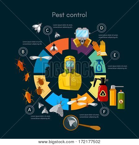 Pest control service infographic insects exterminator detecting exterminating insects