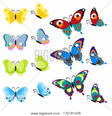 Set of multi-colored butterflies. Insects are a top view and side. Vector, illustration in flat style isolated on white background EPS10