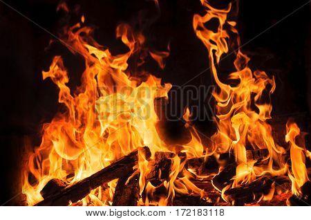 bright flames burning wood on black background