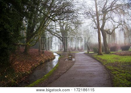 Rising mist over peaceful park with solitary empty bench. Trees on far shore obscured by fog.