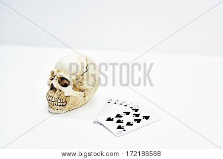 Small decorative human skull with playing cards. Isolated on white background.