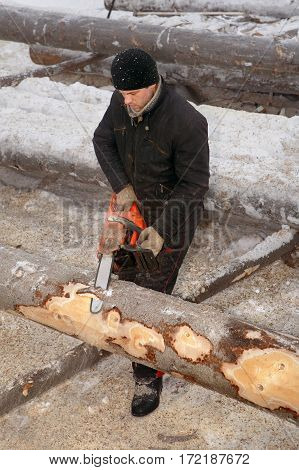 Leningrad Region Russia - February 2 2010: Logger use chainsaw for cutting log.