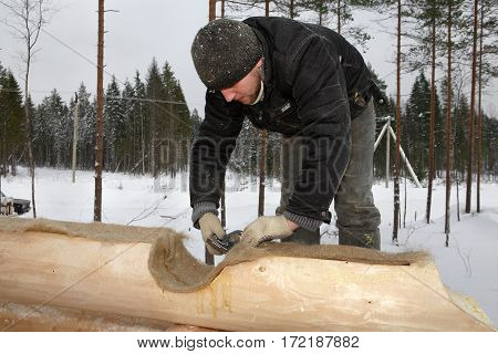 Leningrad Region Russia - February 2 2010: Worker is insulate log cabin walls wool stripes are used for thermal insulation of cross joint corners in log houses jute are also used between wall logs