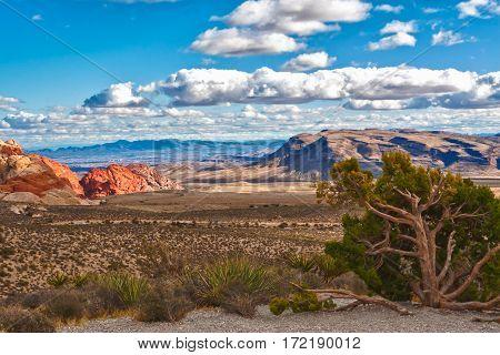 Beautiful stone desert landscape in Nevada USA.