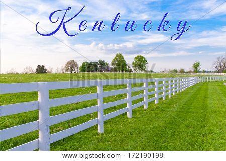 Kentucky card. Horse farm, country summer landscape.