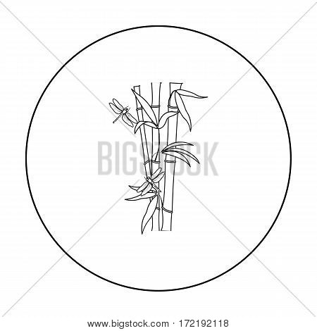 Bamboo icon in outline style isolated on white background. Japan symbol vector illustration.