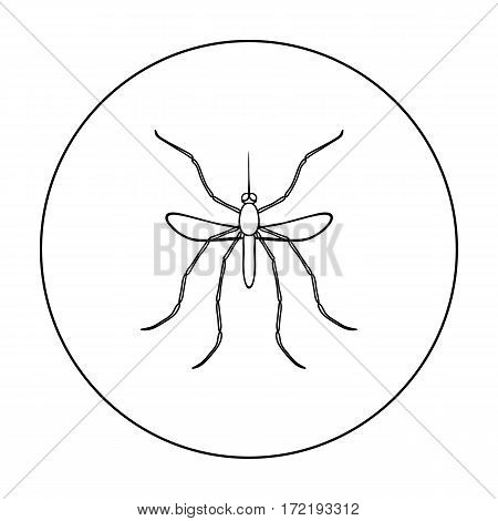 Mosquito icon in outline design isolated on white background. Insects symbol stock vector illustration.