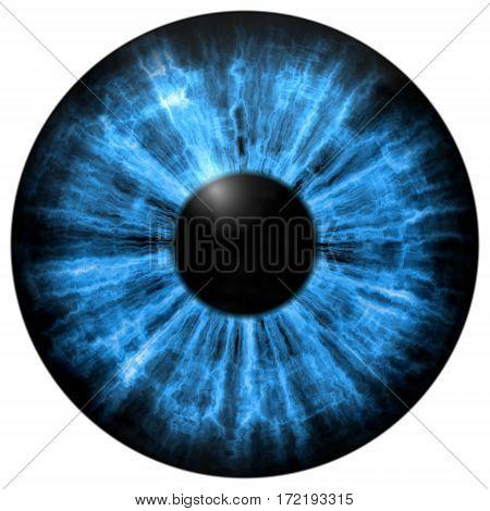 Illustration Of Human Blue Eye, Light Reflection.