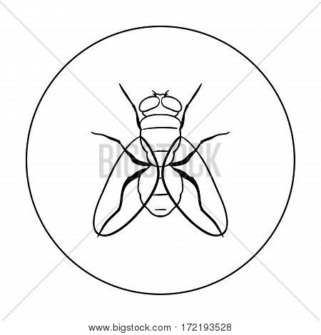 Fly icon in outline design isolated on white background. Insects symbol stock vector illustration.