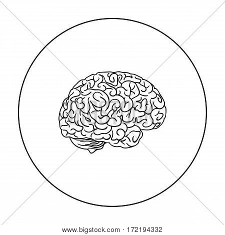 Human brain icon in outline style isolated on white background. Human organs symbol vector illustration.