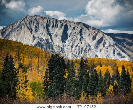 Autumn Scenic. Near Kebler Pass, Colorado, west of Crested Butte.