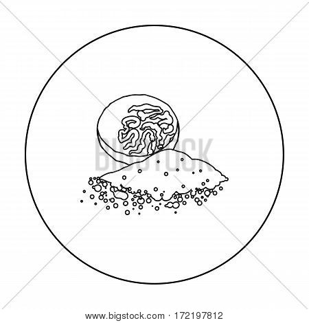 Nutmeg icon in outline style isolated on white background. Herb an spices symbol vector illustration.
