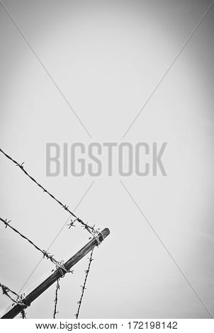 Stylized Image Of A Barbed Wire Security Fence With Copy Space