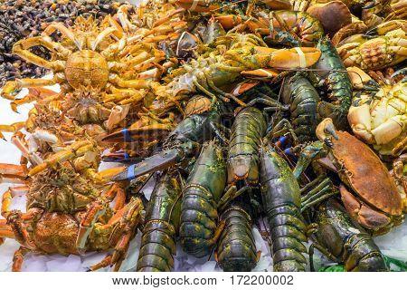 Shellfish at the famous Boqueria market in Barcelona