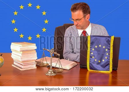 European union lawyer working in the office