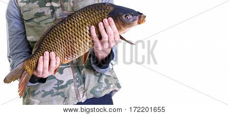 Big Carp In The Hands Of The Fisherman.