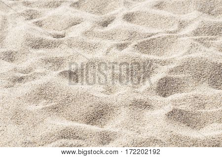 Beach sand close up texture as background