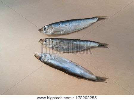 Baltic sprat is a small fish of spicy salting