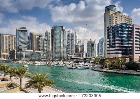 Dubai Marina in the United Arab Emirate