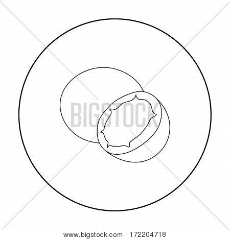 Coconut icon outline. Singe fruit icon from the food outline.