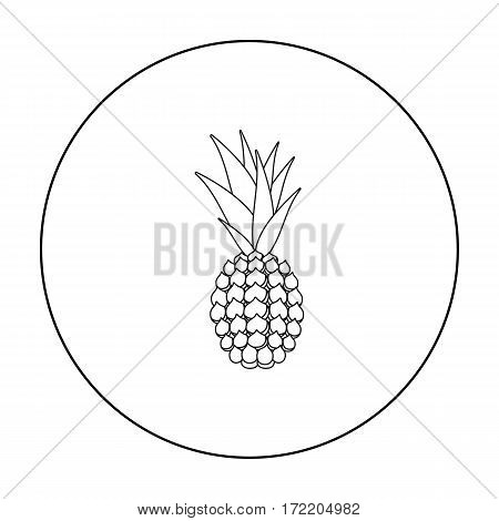 Pineapple icon outline. Singe fruit icon from the food outline.