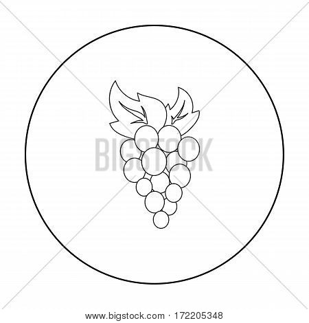 Grapes icon outline. Singe fruit icon from the food outline.