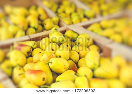 Fresh Bartlett pears on display at the farmer's market