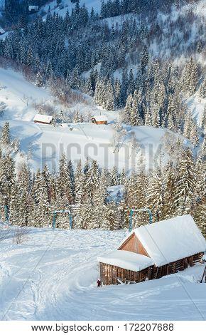 Winter Carpathian Mountains Landscape, Ukraine.
