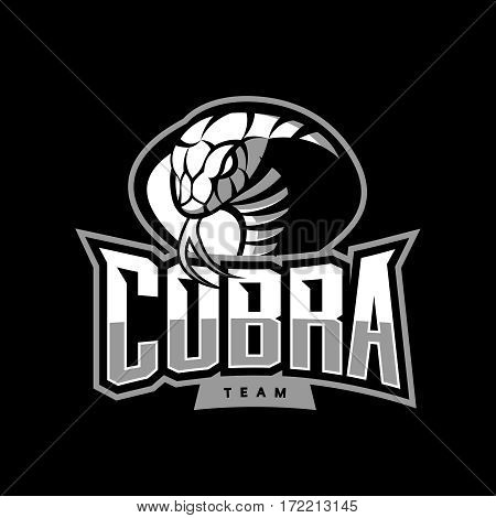 Furious cobra sport vector logo concept isolated on dark background. Web infographic military professional team pictogram. Premium quality wild snake t-shirt tee print illustration