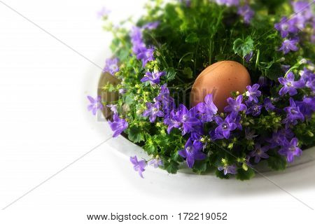 Easter egg in a nest of bluebell flowers corner background on white copy space selected focus narrow depth of field