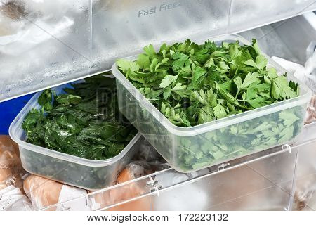 Homemade frozen vegetables in plastic box ready for freezing