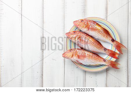 Fresh red mullet fish on plate on white wooden background