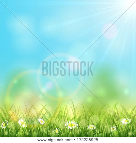 Sunny spring or summer day with grass and flowers, sun light on blue sky background, illustration.
