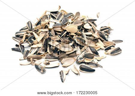 a pile of sunflower seeds shells isolated on white background