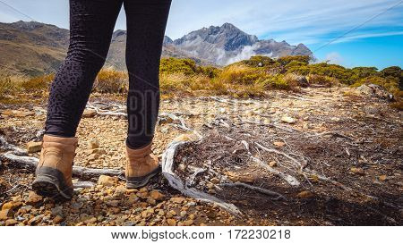 Detail Of Woman Trekking On Mountain Track, New Zealand