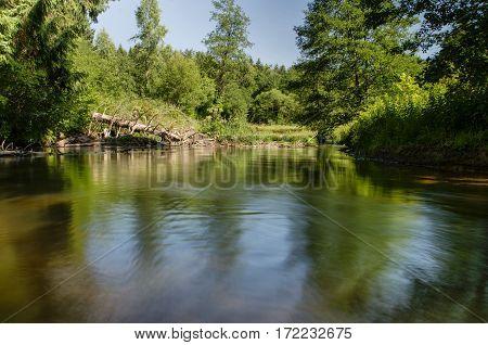 River In Belarussian Forest