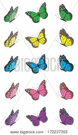 vector illustration of set of colorful butterflies