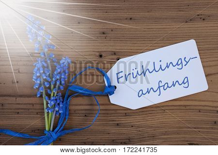 Label With German Text Fruehlingsanfang Means Beginning Of Spring. Sunny Blue Spring Grape Hyacinth With Ribbon. Aged, Rustic Wodden Background. Greeting Card For Spring Season
