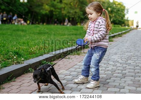 Girl in a pink striped blouse and blue jeans pulling dog