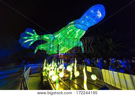 Vivid Sydney At Taronga Zoo. Wild Animals Light Sculptures