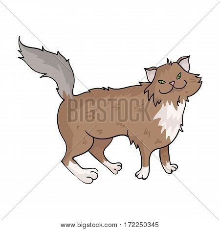 Norwegian Forest Cat icon in cartoon design isolated on white background. Cat breeds symbol stock vector illustration.